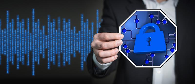 Ciberseguro , la mejor respuesta al ciberataque 0
